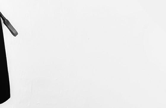 Schwarze Reitgerte vor einem weißen Hintergrund.
