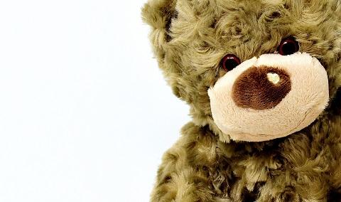 Bild eines Plüsch-Teddybären vor einem weißen Hintergrund.